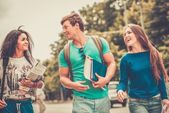 Group of multi ethnic students walking in a city  — Foto de Stock