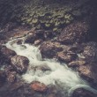 Fast mountain river in a forest — Stock Photo #51454891