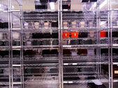 Regály v továrně — Stock fotografie