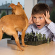 portrait of shoked boy looking on the dog — Stock Photo