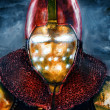 Royalty-Free Stock Photo: Noble knight in personification of iron man