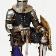 Portrait of a valorouse knight - Stockfoto