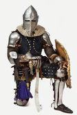 Portrait of a valorouse knight — Stock Photo