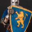 Stock Photo: Knight in blue in hiding behind his shield