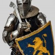 Portrait of armed knight with his shield - Foto de Stock