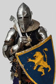 Portrait of armed knight with his shield — Stock Photo