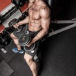 Foto Stock: Topless sportsmis lifting weights