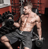 Sexy sportsman with dumbbells in gym — Stock Photo