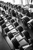 Black and white picture of dumbbells — Stock Photo