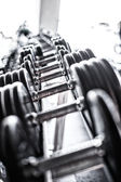 Colorless picture of heavy dumbbells — Stock Photo