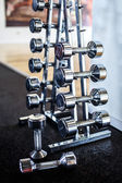 A stand with different weight dumbbells — Stock Photo
