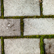 Old gray paving stone with moss — Stock Photo