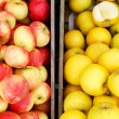 Red and yellow apples in wooden crates — Stock Photo #39650055