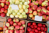 Red and yellow apples in wooden boxes — Stock Photo