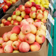 Stock Photo: Red and yellow apples in cardboard boxes