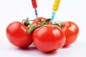 Tomatoes and colorful syringes — Stock Photo