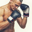 Boxer — Stock Photo #44055741