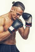 боксер — Стоковое фото