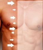 Bodybuilder torso — Stock Photo