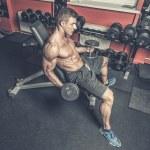 Постер, плакат: Bodybuilder