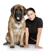 Pretty girl and large dog — Stok fotoğraf