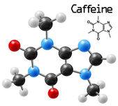 Caffeine molecule — Stock Vector