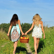 Two beautiful women walking at the meadow. — Stock Photo