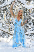 Beautiful woman in the winter forest. — Stock Photo