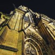 Prague. St. Vitus cathedral in darkness. — Stock Photo