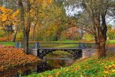 Autumn landscape with river and bridge in Catherine park, Pushki — Stock Photo