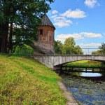 Summer landscape of the Pavlovsk garden, Pil-Tower pavilion. — Stock Photo #31579985