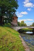 Summer landscape of the Pavlovsk garden, Pil-Tower pavilion. — Stock Photo