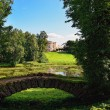 Summer landscape of the Pavlovsk garden, Russia. View to the pal — Stock Photo