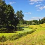 Summer landscape of the Pavlovsk garden. Visconti Bridge — Stock Photo #32120879