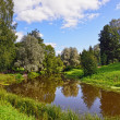Summer landscape in Pavlovsk garden. — Stock Photo