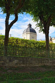 View to the Gatchina palace through the hedge of a garden — Foto Stock