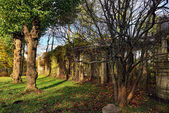 Autumn landscape with old colonade in Catherine garden, — Stock Photo