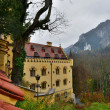 Hohenschwangau castle in Germany. — Stock Photo #37697953
