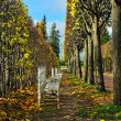 Постер, плакат: The alley with benches in Catherine park in Pushkin Russia