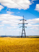 Power lines in the field — Stock Photo