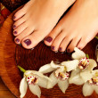 Royalty-Free Stock Photo: Female feet at spa salon on pedicure procedure
