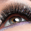 Stock Photo: Eye with long black false eyelashes and creative fashion makeup
