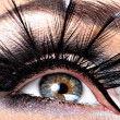 Beautiful Eye Makeup — Stock Photo #41926839