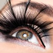 Beautiful Eye Makeup — Stock Photo #41926943