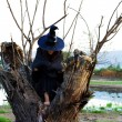 Stock Photo: Witch rests