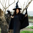 Halloween witch — Stock Photo #12473264
