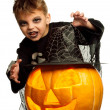 Child in halloween costume — Stock Photo #12058077