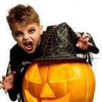 Child in halloween costume — Stock Photo #12913227