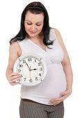 妊娠中の腹時計 — ストック写真