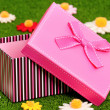 Stock Photo: Gift box on grass
